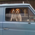 1990-t25-panel-van-guard-dogs